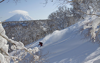 The House Of Powder CAT Skiing