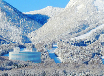 NEW FURANO PRINCE HOTEL EARLY BOOKING SPECIALS