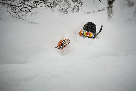 niseko-feb2.jpg